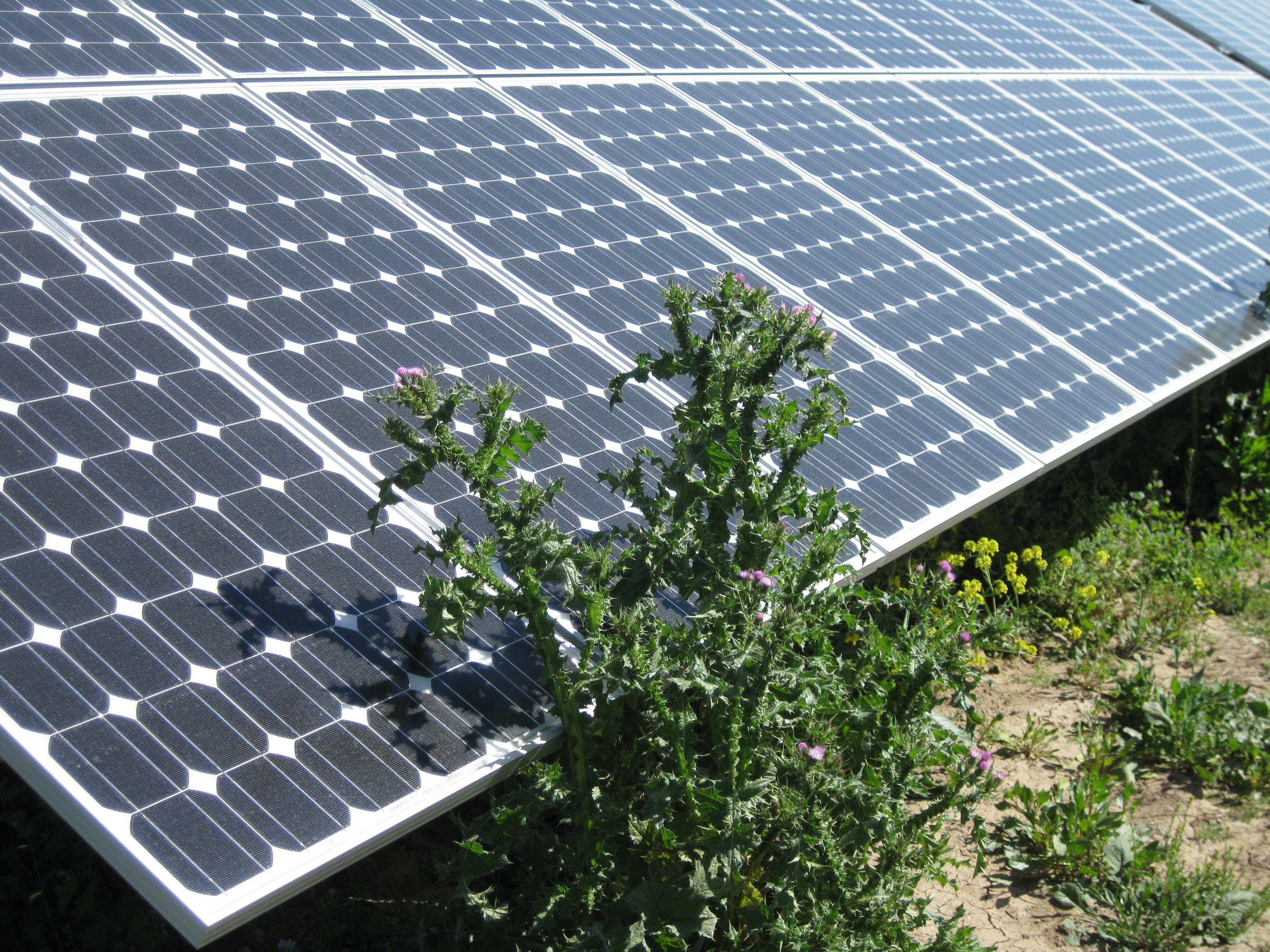 Solaranlage Murcia 01